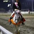 写真: 川崎競馬の誘導馬04月開催 川崎ジョッキーズC-120409-03-large