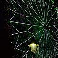 Photos: Ferris wheel at night_120607