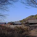 写真: 子安塔から見た清水寺