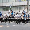 """写真: 早稲田大学 """"踊り侍""""_05 - 第10回 東京よさこい"""