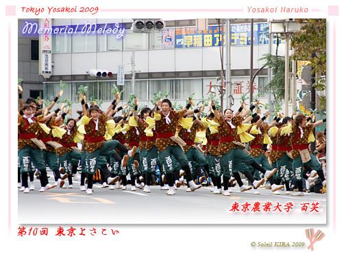 写真: 東京農業大学よさこいソーラン同好会 百笑_01 - 第10回 東京よさこい