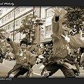 写真: 東京農業大学よさこいソーラン同好会 百笑_02 - 第10回 東京よさこい