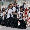 写真: 早稲田大学よさこいチーム 東京花火_06 - 第10回 東京よさこい