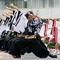 写真: 早稲田大学よさこいチーム 東京花火_05 - 第10回 東京よさこい