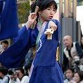 写真: 弥生桜_09 - 第10回 東京よさこい