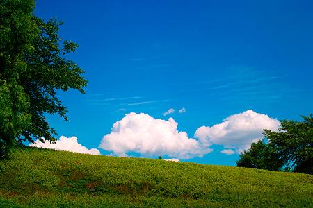 緑と空と雲