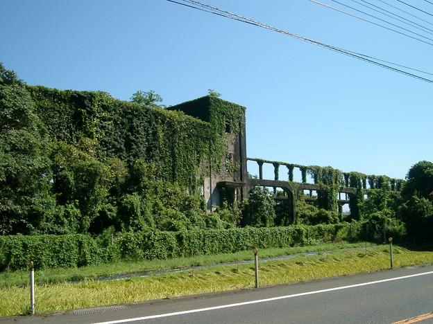 日本の風景・緑の館