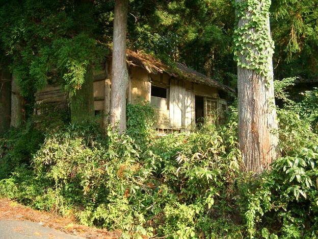 日本の風景・朽ちた小屋