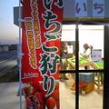 写真: 「いちごの里」(前橋市今井...