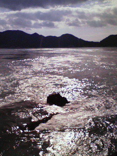 宮窪瀬戸。流れる海。