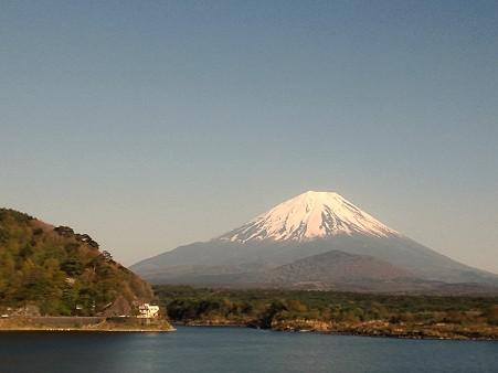 富士山@精進湖