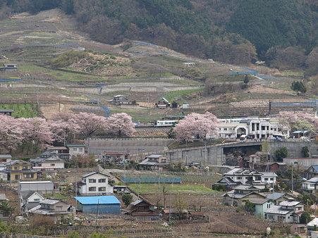ぶどうの丘から駅を見て(勝沼ぶどう郷駅付近)4