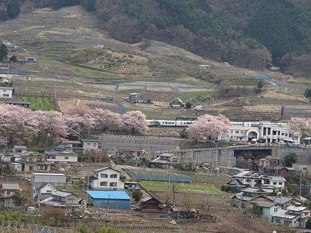 ぶどうの丘から駅を見て(勝沼ぶどう郷駅付近)5