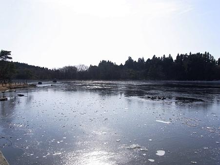 2010年正月帰省 野呂山 氷池とマガモ達03