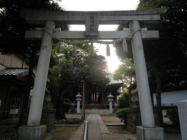 稲荷神社[若木稲荷神社] 04