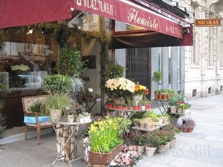 パリ花6 IMG_7066