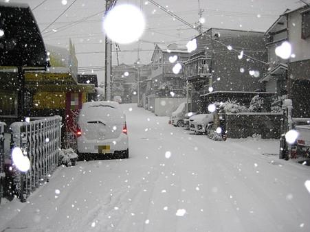20101231_yuki2