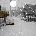 写真: 20101231_yuki2