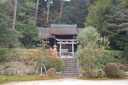 奈良 円照寺DSC_0909
