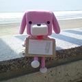 Photos: 木崎浜海岸で2