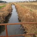 Photos: 園部川