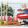 東北本線 東鷲宮-栗橋 貨物列車 EH500