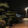 阿字ヶ浦駅 追憶のホーム