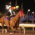 Photos: トワイライトワルツ@TCKディスタフ 返し馬