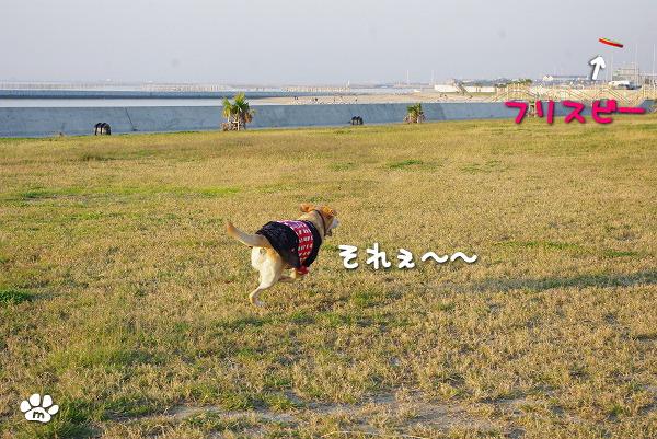 s-myu2009_1108(124)