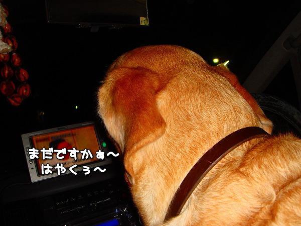 s-myu2009_1113(008)