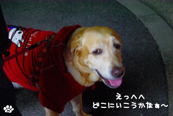 s-myu2009_1204(031)