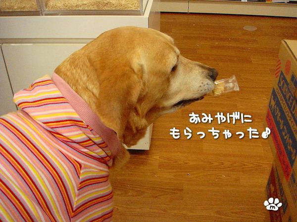 s-myu2009_1213(024)