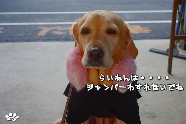 s-myu2009_1228_21