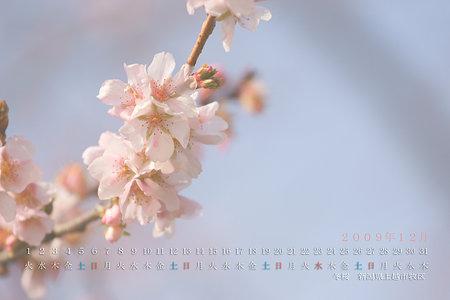 2009年12月カレンダー