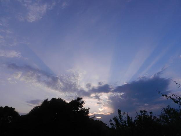 Photos: 夜明け_6.8