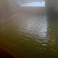 写真: 箱根高原ホテル 内湯