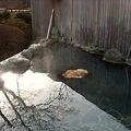 写真: 箱根高原ホテル 露天