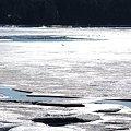 写真: Maquoit Bay 1-27-10