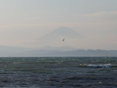 091115-江の島 (29)