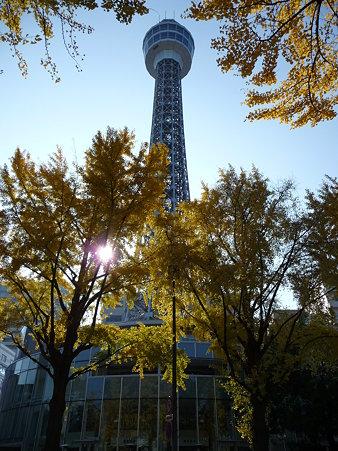 091123-山下公園通 (27)