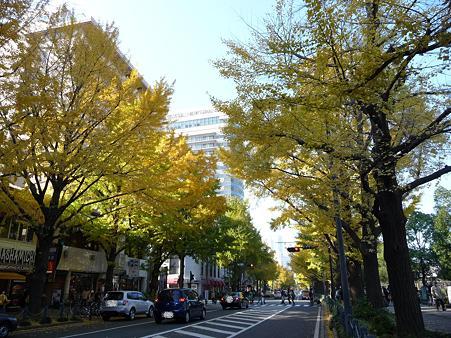 091123-山下公園通 (29)