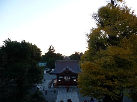 091204-八幡さま (10)