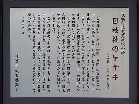 100120-日枝社 (5)