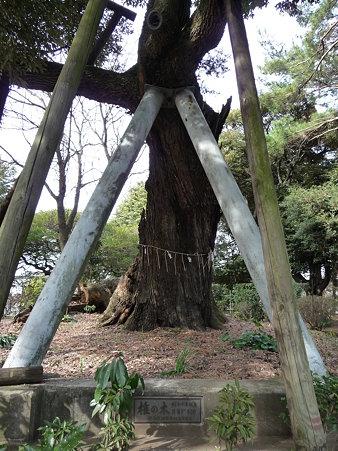 100120-6.西福寺 (9)