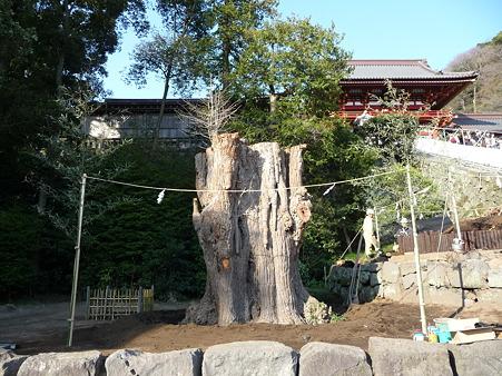 100319-八幡さま (8)