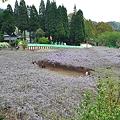 Photos: 20110424_134735_raw