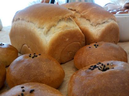 食パンとあんぱん。