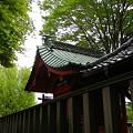 写真: 本殿-頼政神社 (群馬県高崎市宮元町)