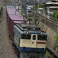 Photos: _MG_9665 原色『2000番台』