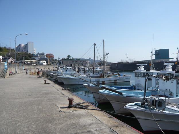 P1060544 宮崎漁港